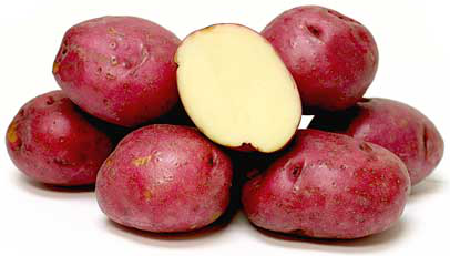 Chieftan Red Organic Potato