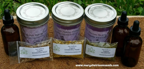 Herbal Remedy Starter Kit-3