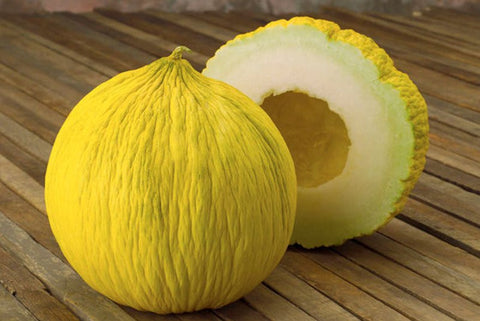 Casaba Golden Beauty Melon