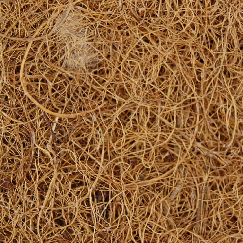 Coconut Coir Sprouting Mat