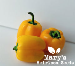 Golden Cal Wonder Bell Pepper