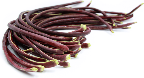 Thai Purple Podded Yard Long Bean