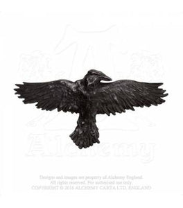 Black Raven Hair Slide