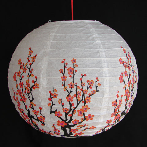 2 of Chinese White Paper Lanterns with Plum Pictures - Asianly