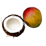 Coconut-Mango Florida Salt Scrub