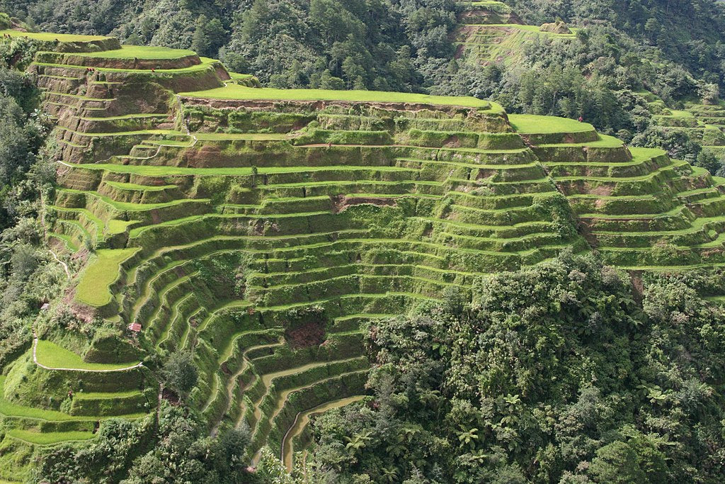 Banaue Rice Terraces Phillipines