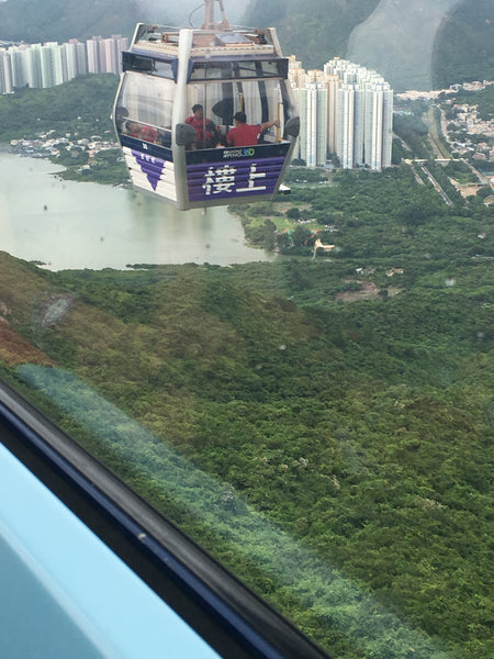 Cable Car to Big Buddha Hong Kong