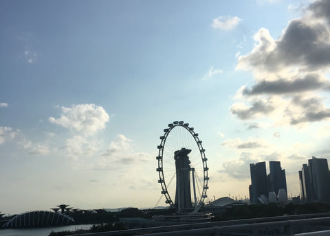 Singapore Flyer and skyline