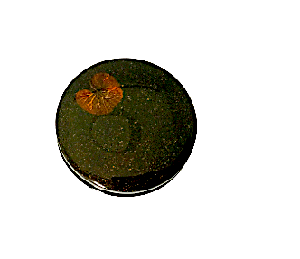 Lacquered Round Black Trinket Box featuring Summer Flowers
