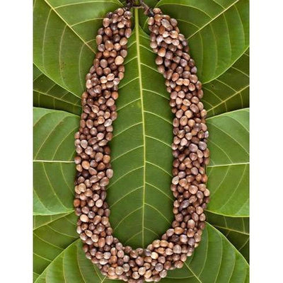 Handmade Seed Choker Necklace-Graines de Cambodge-Temples and Markets