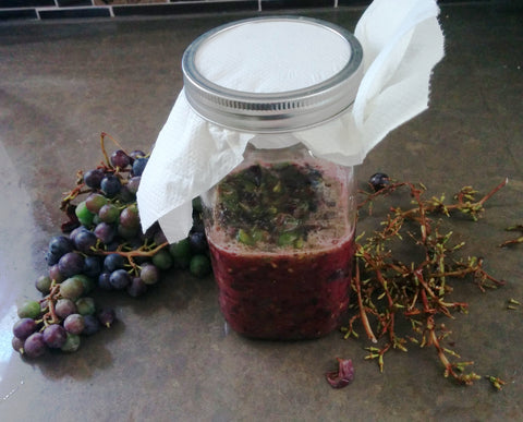 crushed grapes for vinegar making