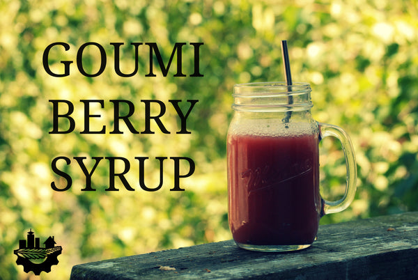 Homemade  berry syrup, for those hot summer days! Mix it into cold water for a quick, refreshing drink.