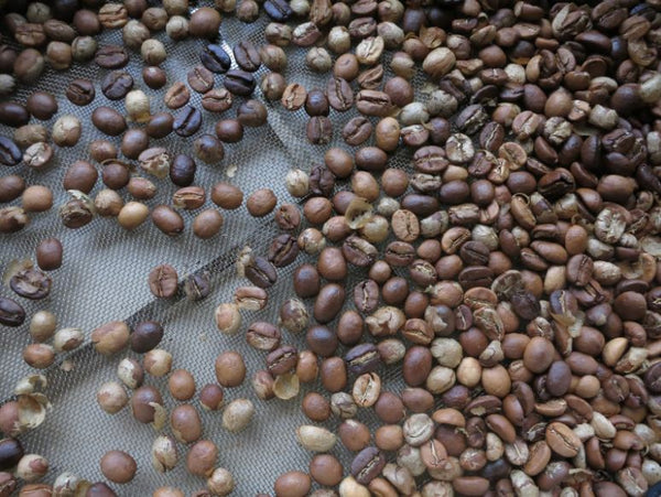 Home-Roasted Coffee Beans