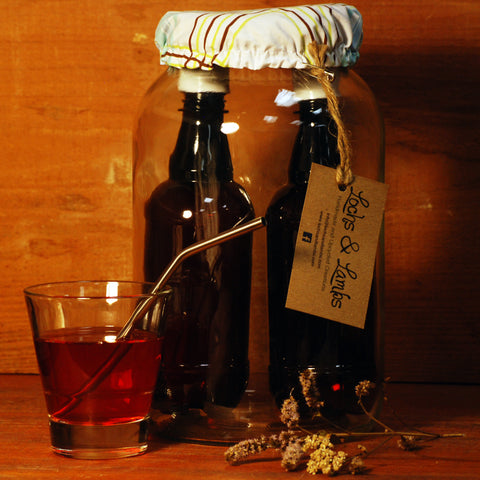 Kombucha Kit - Everything you need to brew your own kombucha!