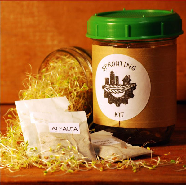 Sprouting Kit! Includes several varieties of delicious, specially prepared sprouting seeds.