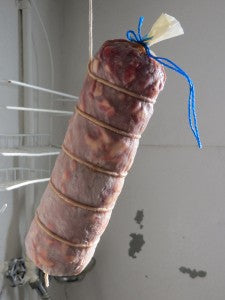 This is what the salami looked like at two weeks old.