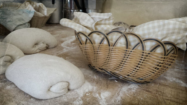 Bread Dough Baskets