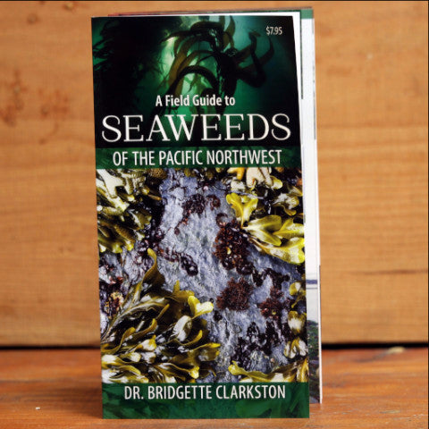 A Field Guide to Seaweeds of the Pacific Northwest