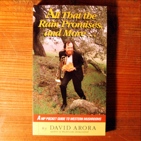 All That the Rain Promises and More... - David Arora
