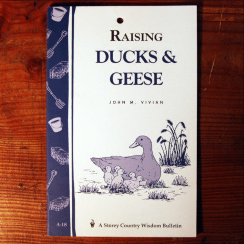 Raising Ducks & Geese (Storey's Country Wisdom Bulletin)