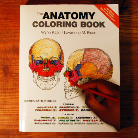 Anatomy Coloring Book - 4th Edition