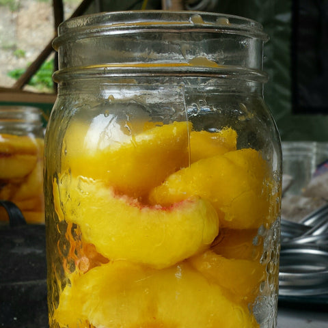 20160811 Canned Peaches