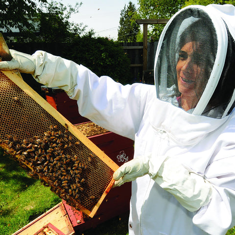 20161102 Intro to Beekeeping