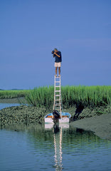 Eric Horan photographing on ladder Beholding Nature book