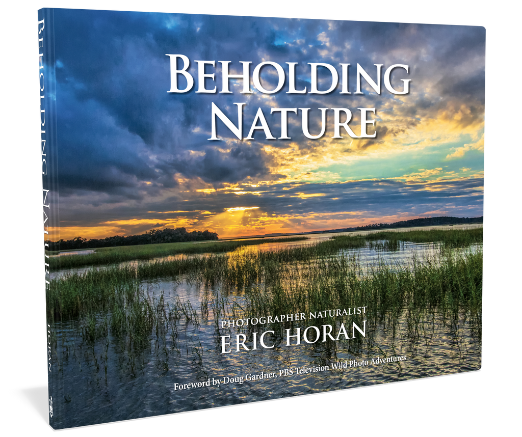 Beholding Nature