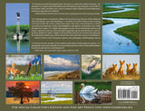 Back cover Eric Horan Beholding Nature Photography book Starbooks