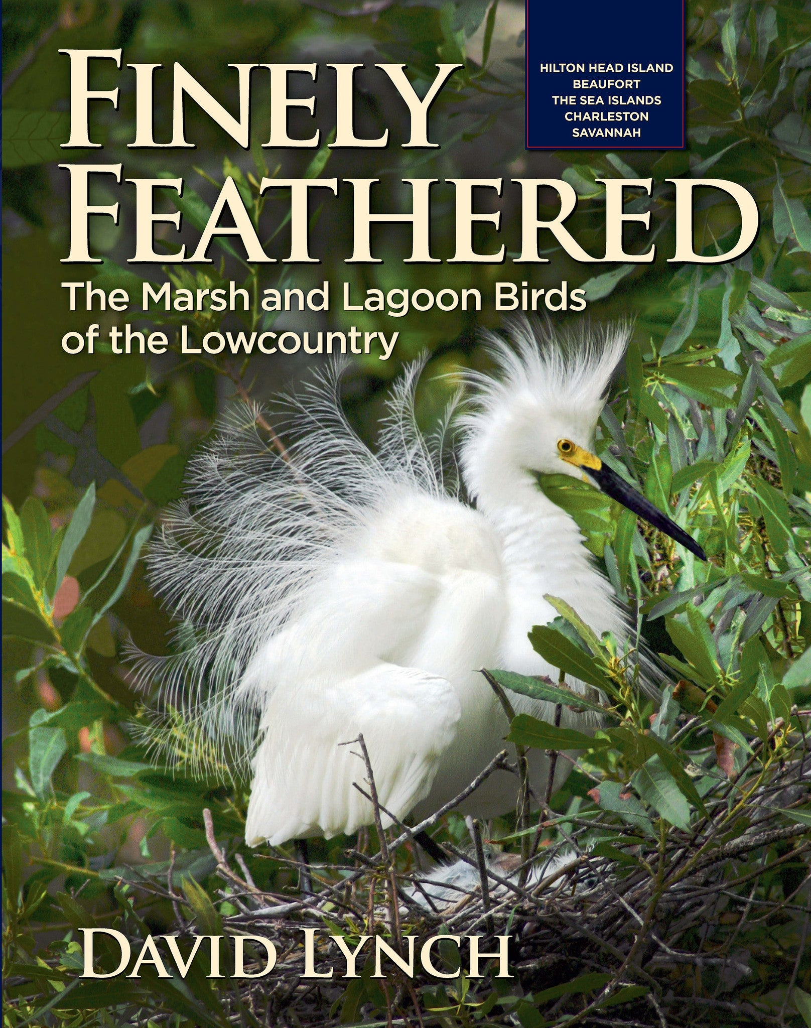 Cover: Finely Feathered, Marsh and lagoon birds of the lowcountry field guide book David Lynch and Starbooks
