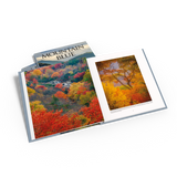 Mountain Blue Photography Book: Autumn Trees and waterfall. Graveyard Fields nr. Canton NC