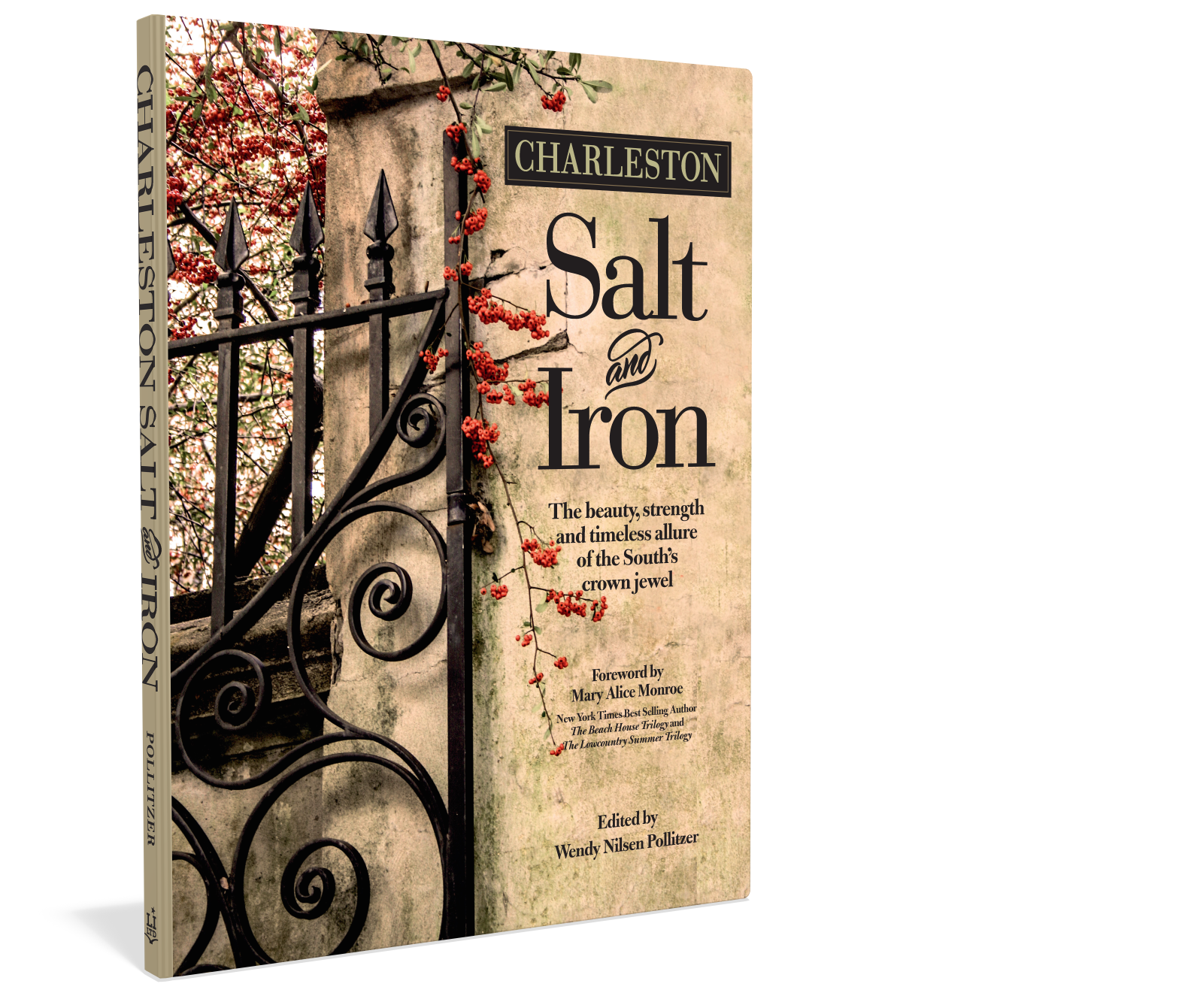Cover: Charleston Salt & Iron Author Wendy Pollitzer Starbooks