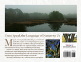 Early morning fog: moody pond and trees photograph from Still Standing the beauty of southern trees book.
