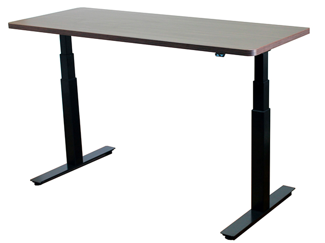 Standing Electric Desk