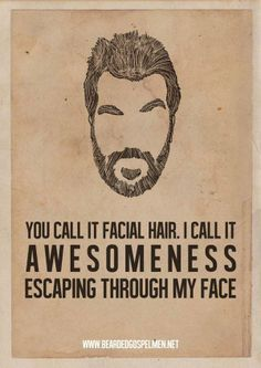 awesomeness beard facial hair