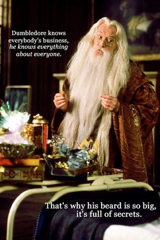 dumbledore harry potter beard secret