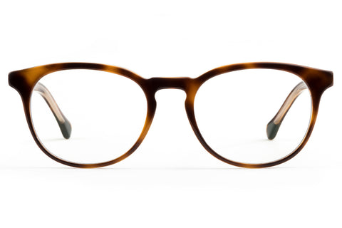 felix gray glasses back to school