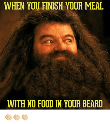 hagrid harry potter beard