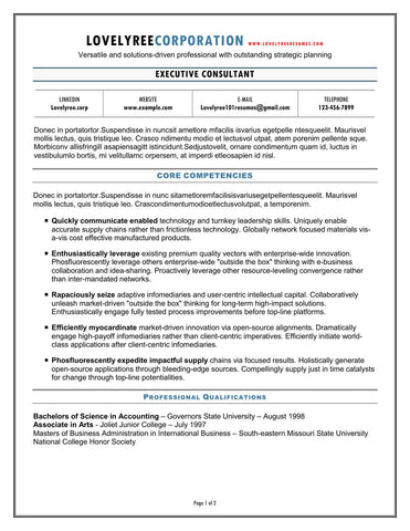 CLASSIC Executive Elegant Resume