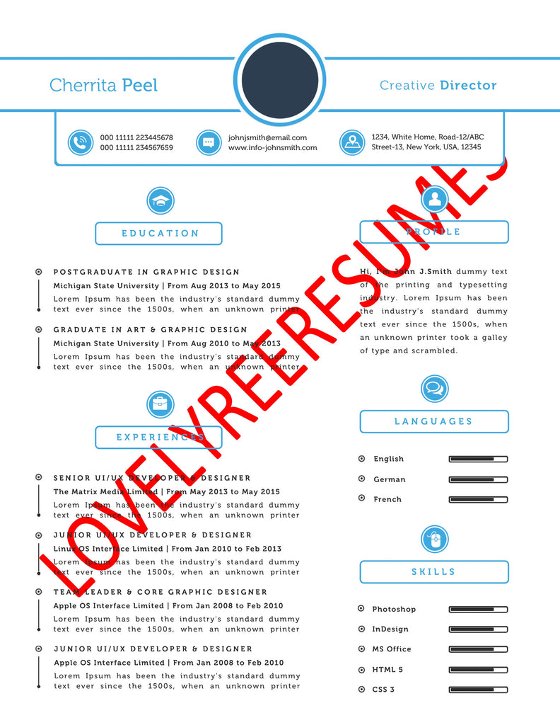 resume writing services usa