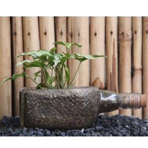 Old Monk Planter with Arrowhead Syngonium - Green The Map Upcycled Recycled Fairtrade Ecofriendly