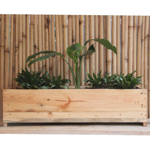 Upcycled Wood Planter Peace Lilly & Dracaena Compacta