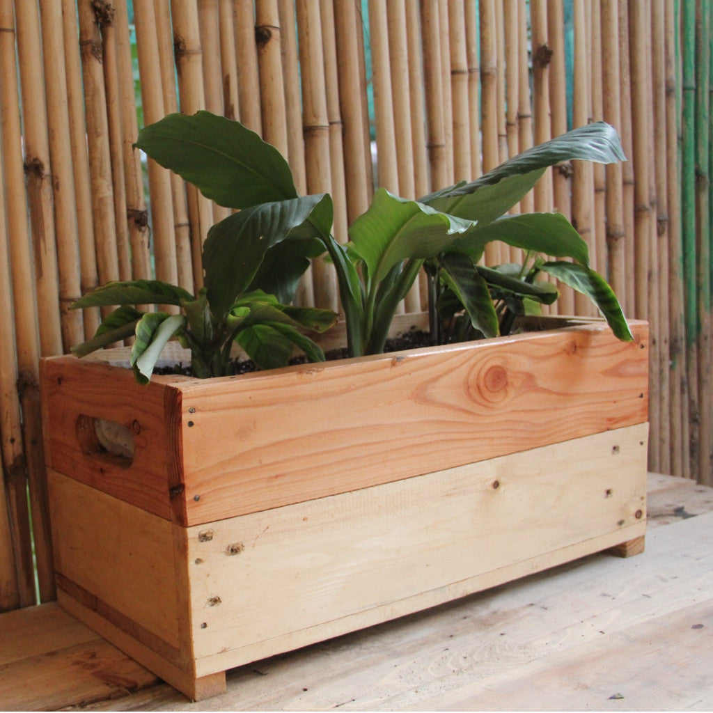 Upcycled Wood Planter With Peace Lilly and Maranta