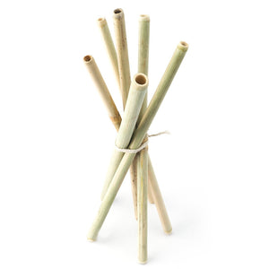 Bamboo Straws - Set of 6 - Eco-friendly/Washable/Reusable - Green The Map Upcycled Recycled Fairtrade Ecofriendly