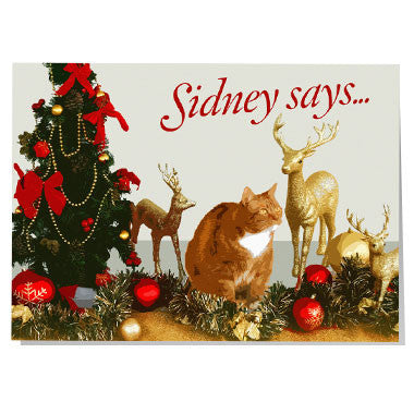 Sidney says... Christmas card