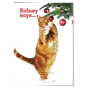 Y21 Sidney says... Merry Christmas