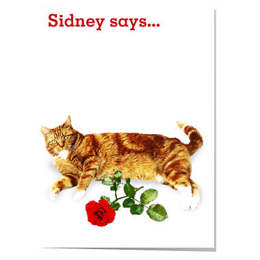 Sidney says... I love you