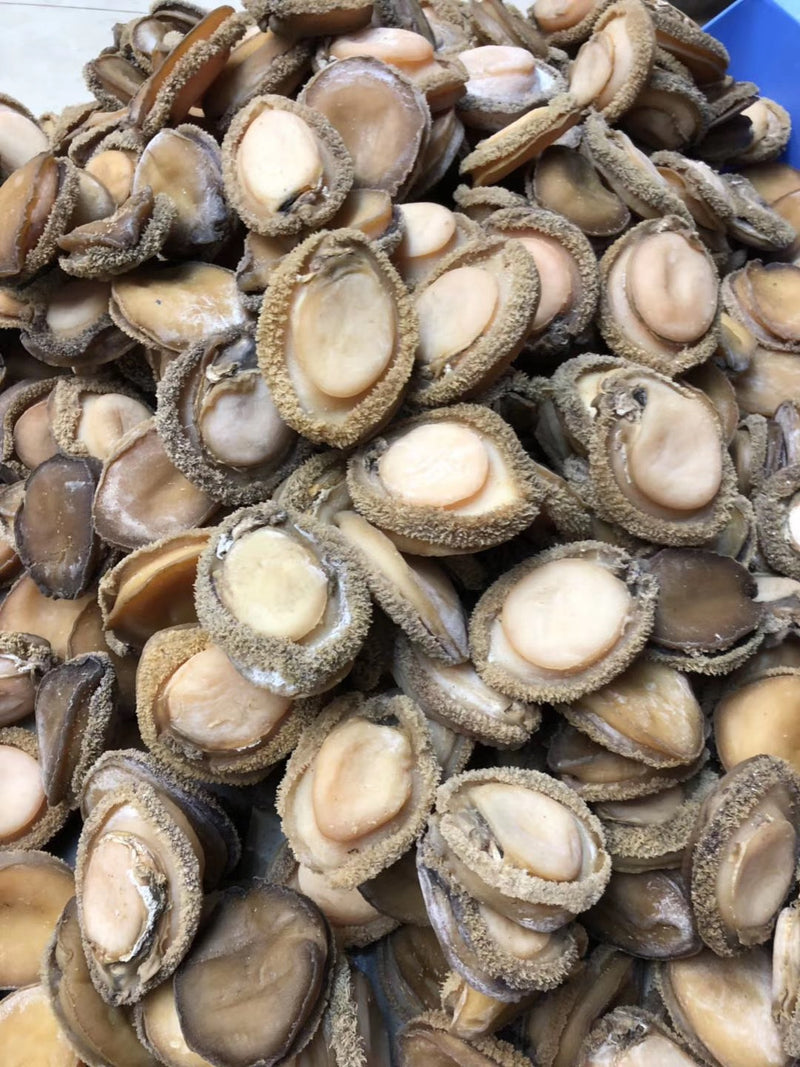 加拿大邮寄-南非鲍鱼 12-20头 / Order within Canada - Dried Abalone 12-20 pcs