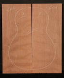 Ukulele Curly Sinker Redwood Top 07